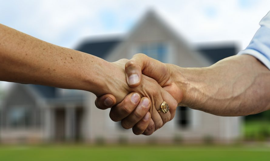 Виды завещаний, которые доступны сегодня для супругов