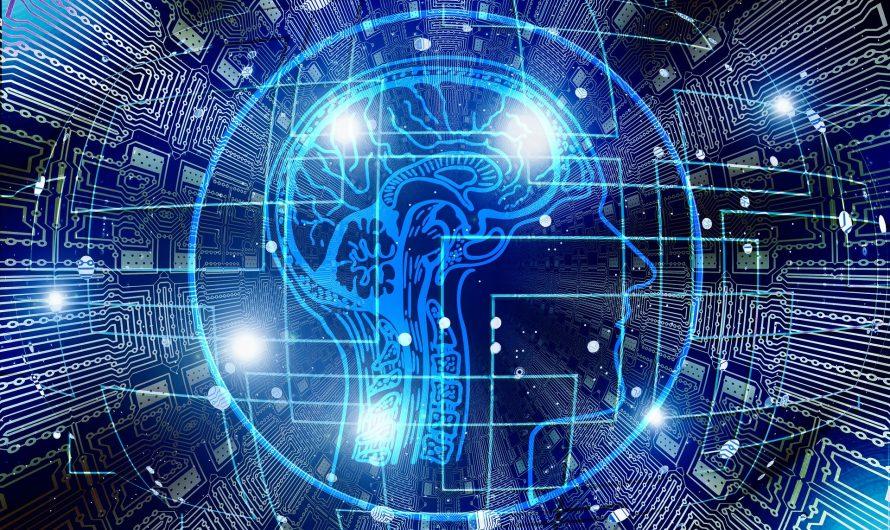 Биометрическая идентификация как новый способ установления нотариусом личности гражданина, обратившегося за совершением нотариального действия