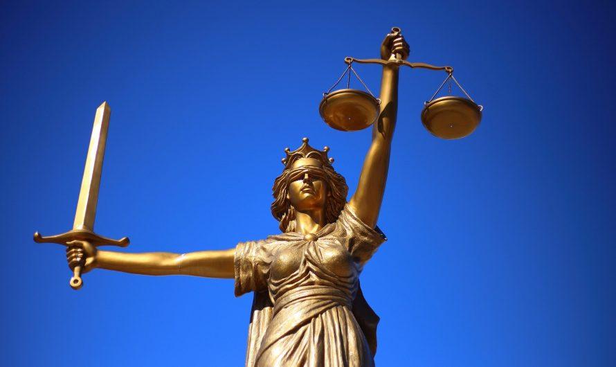 Услуги ПТХ в практике Конституционного Суда РФ 2020